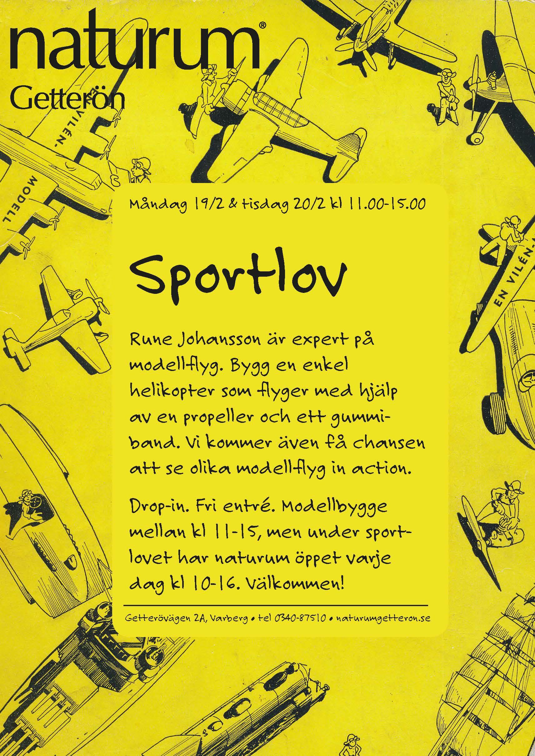 Sportlovsaktivitet