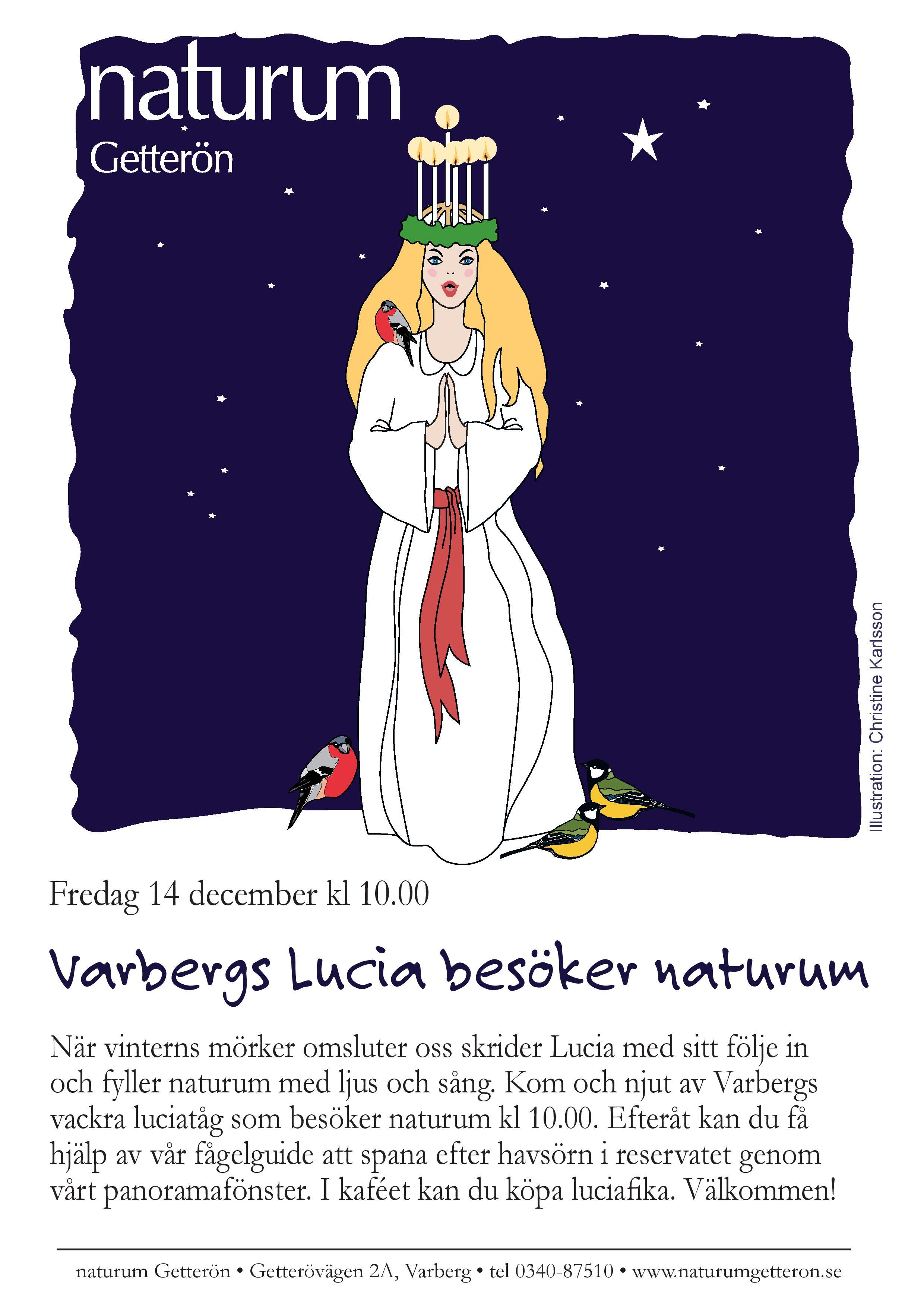 Varbergs Lucia kommer till naturum