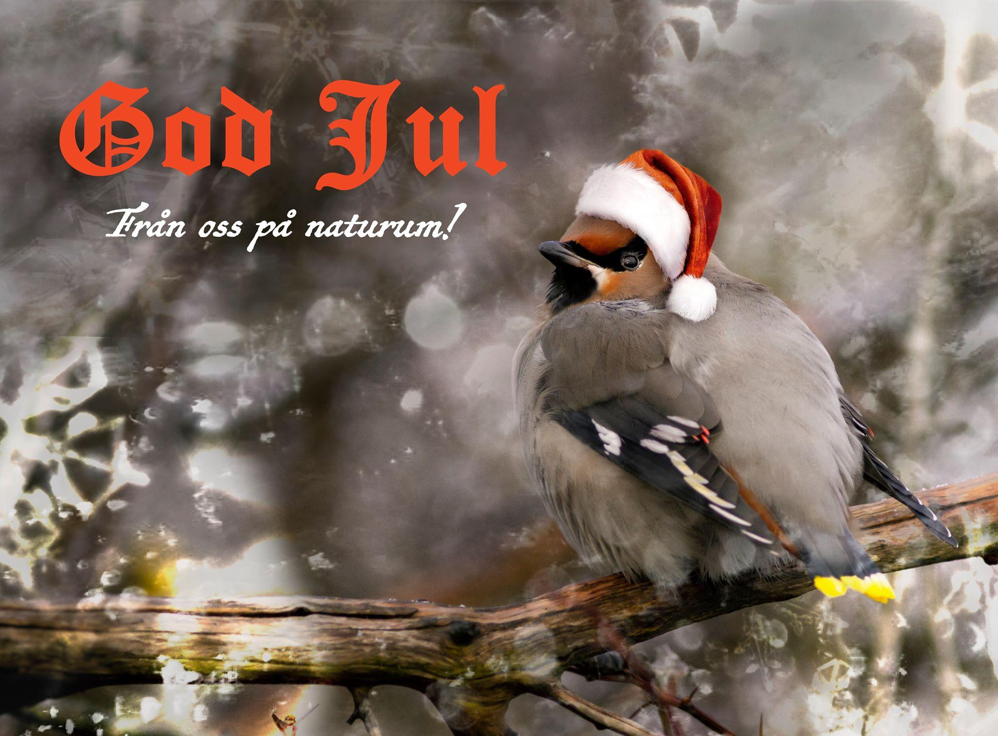 God jul på er!