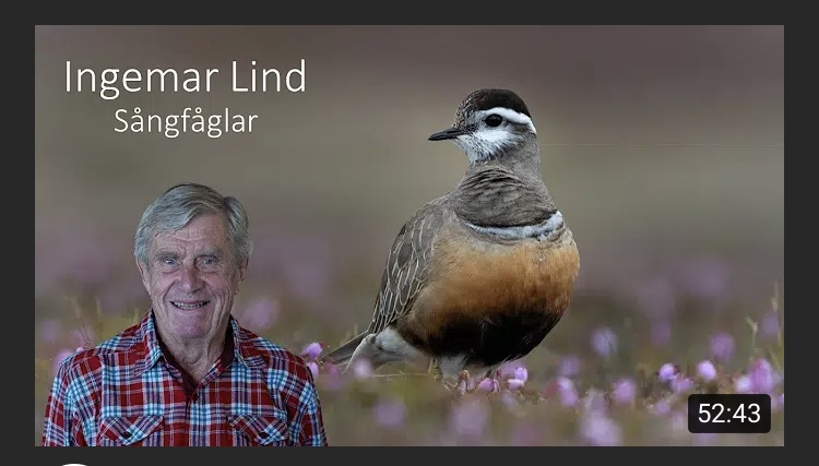 Sångfåglar med Ingemar Lind i digital form